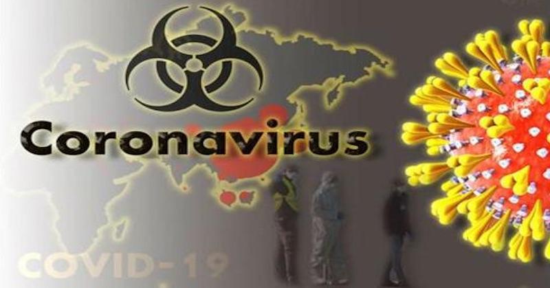 Globalisti sú predátori, Covid-19 je zbraň avy ste korisť